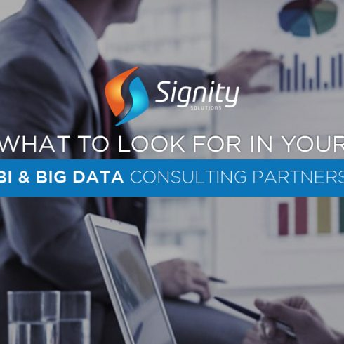 BI and Big Data Consulting Partners