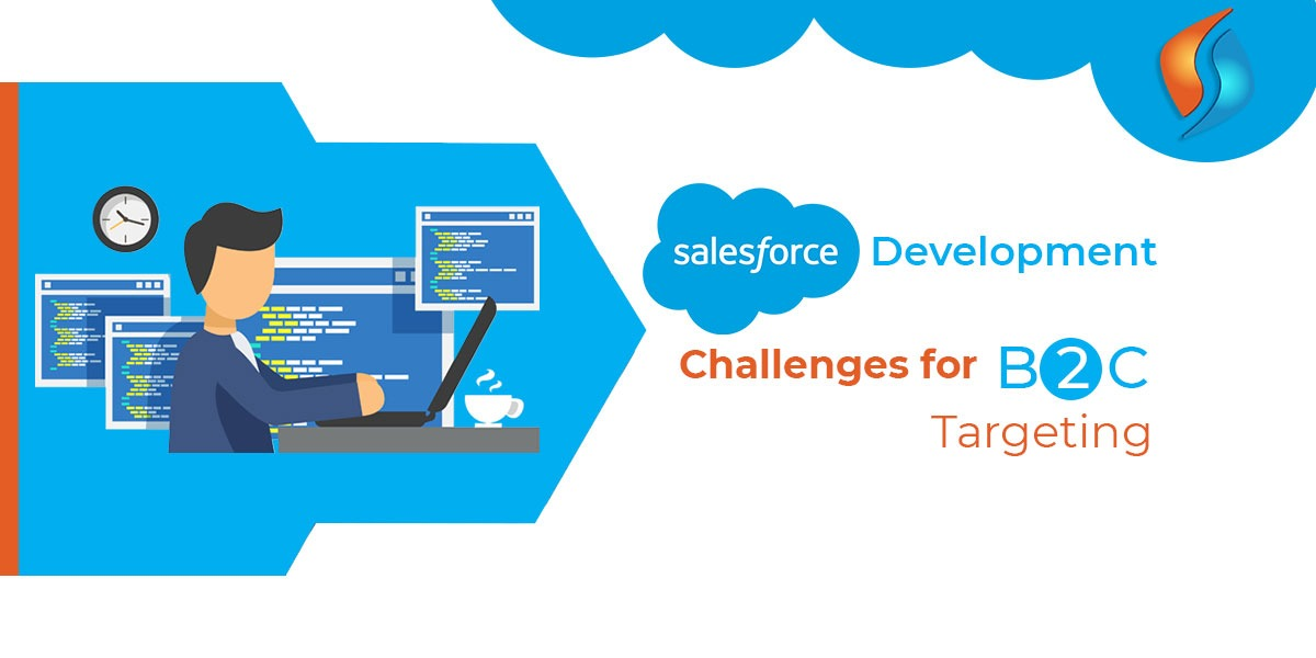 Salesforce Development Challenges for B2C Targeting